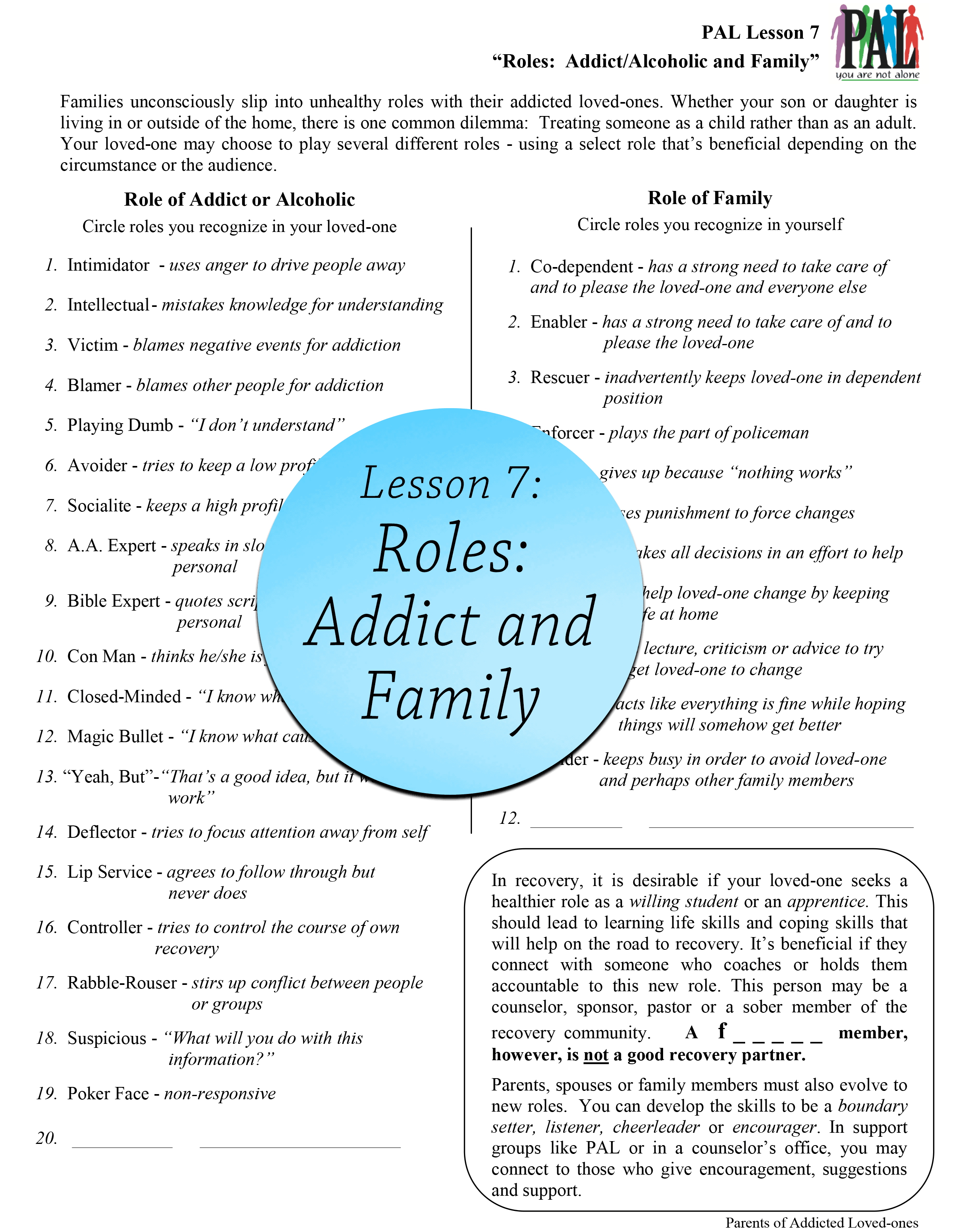 Lesson 7: Roles: Addict and Family